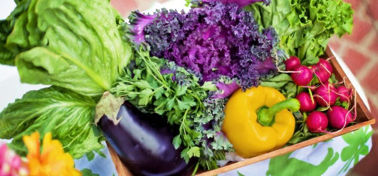 Alimenti vegetali che aiutano le ossa